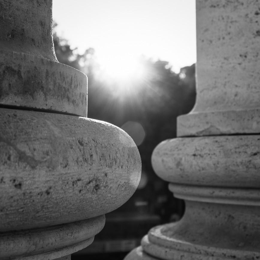 Alba di un nuovo giorno all'epoca del Covid: 3 nuovi progetti formativi sull'Avviso 1/2020 del Fondo Foragri